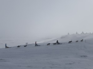 hiver dans vercors