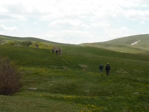 plateaux du Vercors