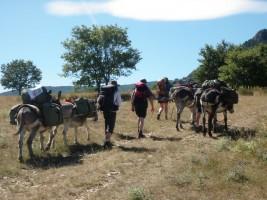 Vercors en famille rando d'ânes