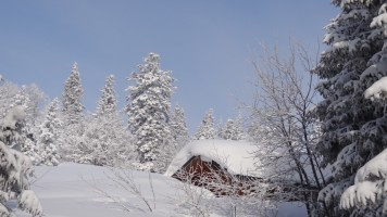 paysage neige avec refuge